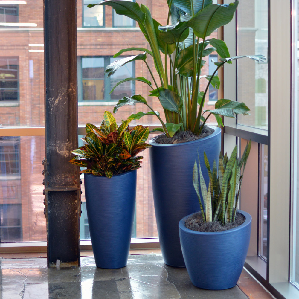 35 Indoor Garden Ideas To Green Your Home: Interior Landscaping Photo Albums